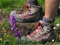 CONSEIL : Bien choisir ses chaussures de randonnée